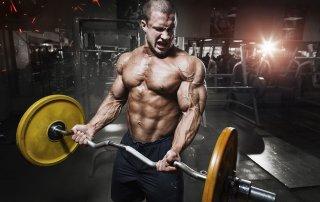 Bodybuilding L-Arginine Pump NO2