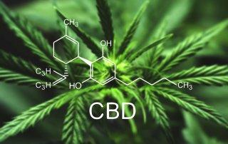 Always On Nutrition - CBD Oil Supplements