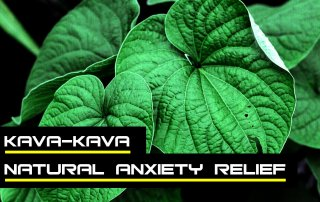 Always On Nutrition - Kava Review