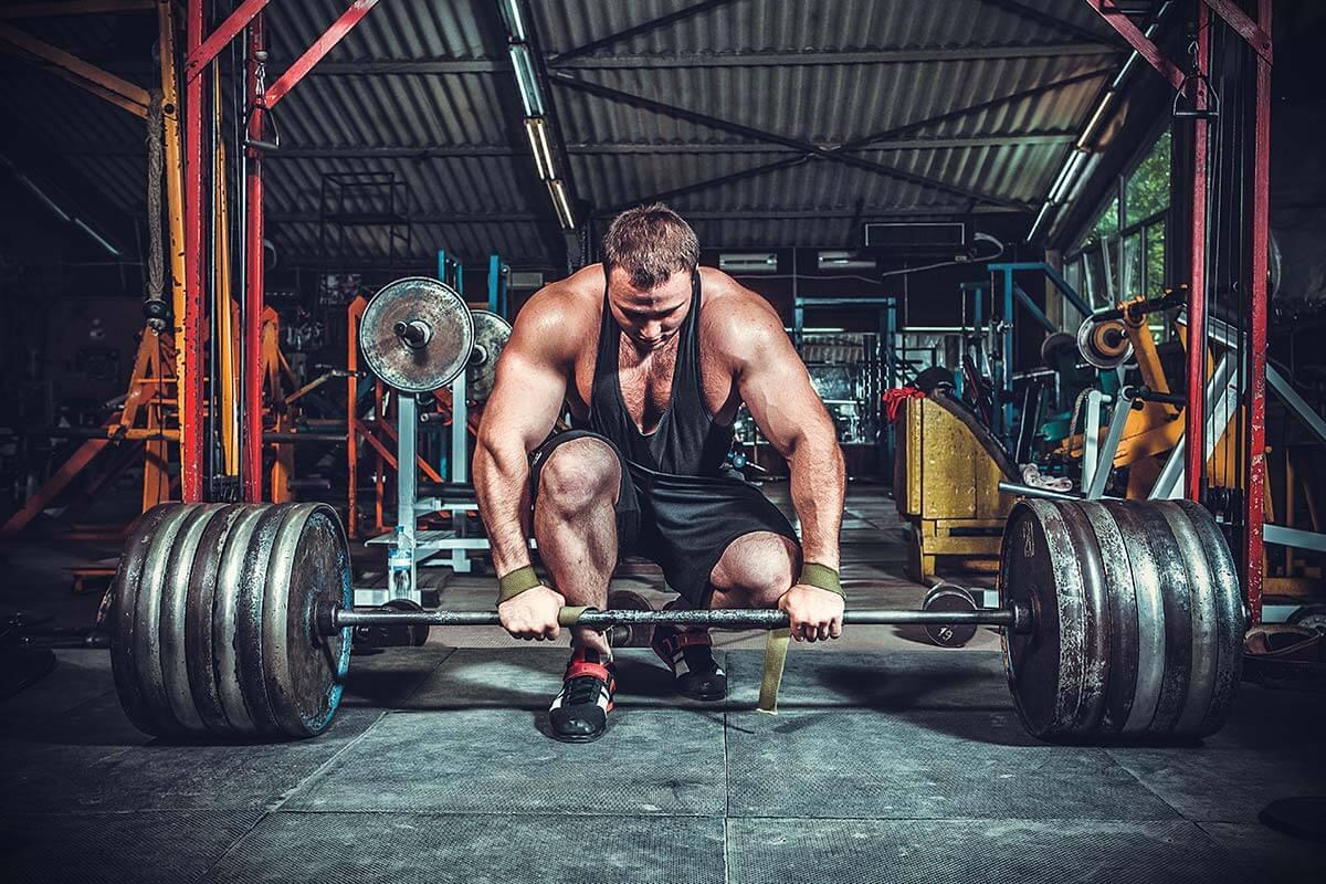 Always On Nutrition - Bodybuilding Back Workout