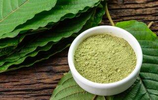 Green Malay Kratom - Hero